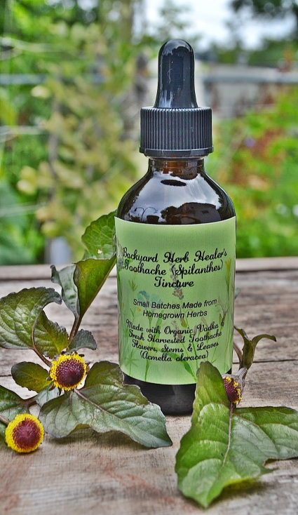 Toothache Tincture